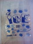 ถุงน้ำแข็ง