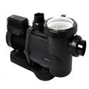BX 3 HP/3PH Pump
