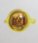 เสือหลวงพ่อเพี้ยน วัดเกริ่นกฐิน จ.ลพบุรี   (N46785)