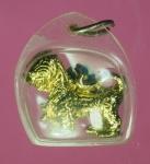 13859 สิงห์ตะกั่วชุบทอง เลี่ยมพลาสติกเก่า จากวัด ไม่ทราบที่ 12