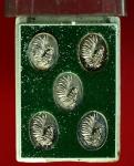 16258 เหรียญเม็ดแตง หลวงปู่สรวง วัดถ้ำพรหมสวัสดิ์ ด้านหลังเหรียญมีหมายเลขกำกับทุ
