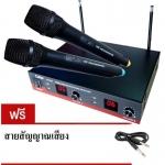 Ceflar CM-005 Wireless Microphone ชุดไมค์ลอยคู่พร้อมใช้ คุณภาพดี